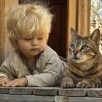 Bambino salvato da otto gatti.