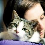Come comunicare con il tuo gatto? - I CONSIGLI DI DOTTOR MIAO