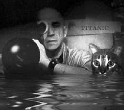 """Gatti e cinema: il festival che dice """"Miao""""."""