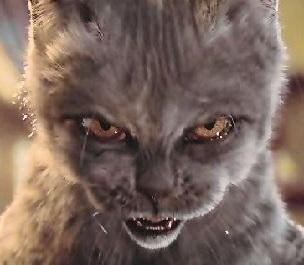 """""""Il gatto furioso"""" di Ludovico Arrosto – CANTO SESTO"""