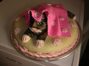 Torta gatto 11