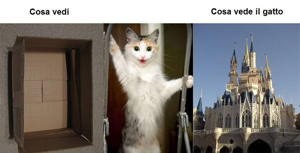 Cosa vedono gli umani cosa vedono i gatti - Perche i gatti fanno la pipi sul letto ...