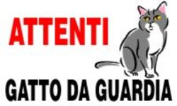 gatto da guardia 2