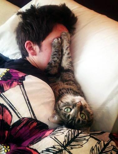Ecco perchè i gatti dormono sempre!