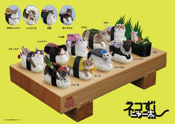 piatto nekozushi cat sushi gatto