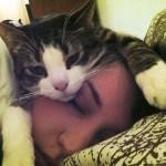 Perchè i gatti dormono nel letto degli umani?