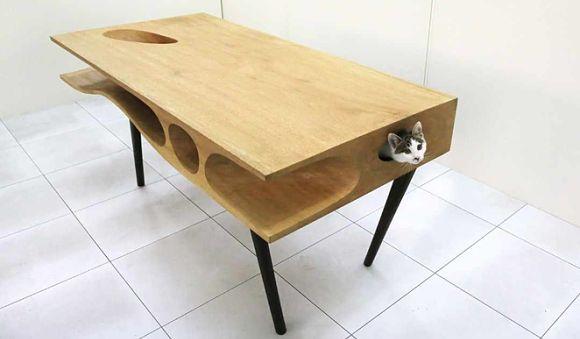 Ecco Cat Table: la scrivania per gatti