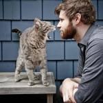 Ecco perchè i gatti disobbediscono ai loro umani