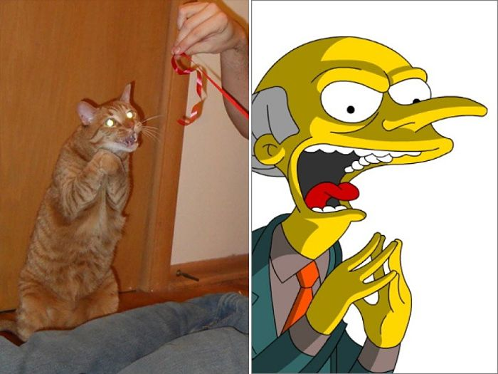 Mr. Burns dei Simpson