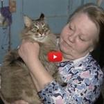 Masha la gatta che ha commosso il mondo salvando un neonato [VIDEO]