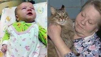 Masha, la gatta che ha salvato un neonato dal congelamento