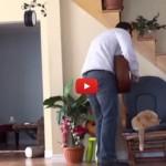 Il padrone lo maltratta, il gatto si vendica [VIDEO]