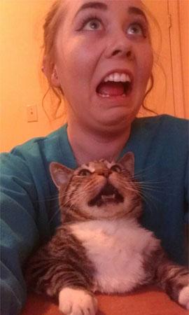 Selfie con il gatto