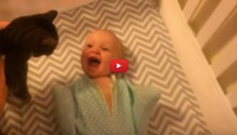 Mettono il gatto nella culla, il neonato impazzisce di gioia [VIDEO]