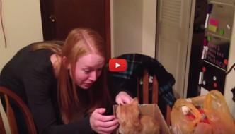 La sorpresa più bella: un gattino per la sua fidanzata [VIDEO]