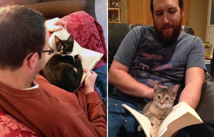 Cani e gatti che non ci lasciano leggere in pace for Youtube cani e gatti