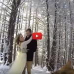 Il video del matrimonio lo gira il cane: risultato mozzafiato [VIDEO]