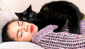 Beebz, il gatto che protegge una ragazza epilettica