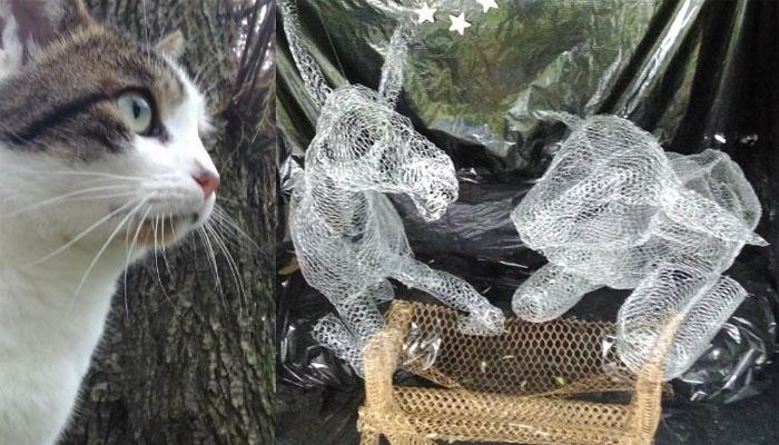 La storia della gatta che scalda gesù e vive nel presepe