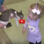 Scarlett, la bimba senza un braccio adotta un gattino senza zampa [VIDEO]