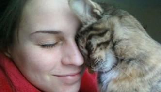 Il vostro gatto vi ama ma voi non ve ne accorgete