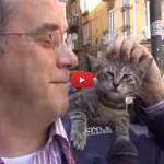 L'uomo che va in giro con un gatto sulla spalla
