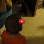 Bimba improvvisa una tenerissima conversazione con il suo gatto [VIDEO]