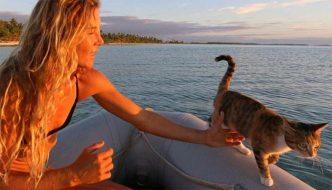 Amelia, la gatta che gira il mondo in barca con la sua umana