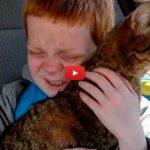Bimbo autistico rivede il gatto smarrito: la sua emozione è COMMOVENTE [Video]