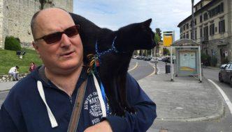 Fuly, il gatto che vive sulla spalla del suo umano