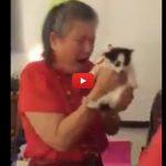 Dopo 16 anni una professoressa perde il gatto: alunni le fanno una sorpresa! [VIDEO]