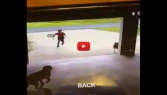 Bambino entra di nascosto nel garage di un uomo, ma è per un buon motivo [VIDEO]