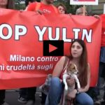 Roma e Milano in marcia contro lo Yulin Festival [VIDEO]