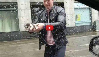 Uomo ferma l'auto e salva un gattino nel bel mezzo di un temporale [VIDEO]