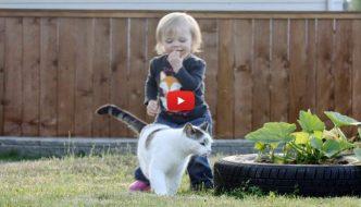 Bimba riabbraccia il gatto che non vedeva da tre anni [VIDEO]