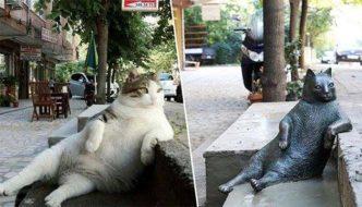 Dopo la morte, il gatto Tombili si è meritato una statua