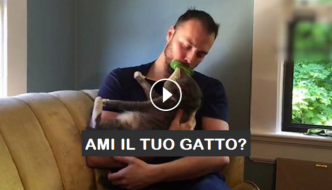 Leccagli il pelo e ti farai amare dal tuo gatto [VIDEO]