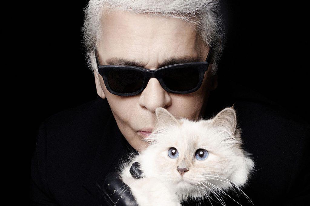 Karl Lagerfeld gatta